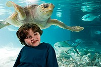 Boy in front of sea turtle in aquarium (thumbnail)