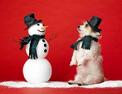 Dog and Snowman