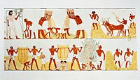 Nina M. Davies (1881-1965), Ancient Egyptian Painting, Chicago,1936. Plate: reaping, winnowing and threshing of wheat. Replica of fresco from Thebes, ...