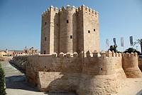 Torre de la Calahorra Cordoba, Andalusia, Spain