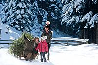 Austria, Salzburg Country, Flachau, View of family with christmas tree and sledge in snow