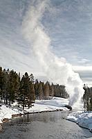 Riverside Geyser, Winter, Upper Geyser Basin, Yellowstone NP, WY