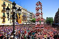 Xiquets de Tarragona ´Castellers´ building human tower, a Catalan tradition Festa de Santa Tecla, city festival  Plaça de la Font Tarragona, Spain