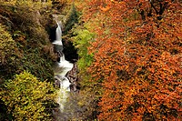 Autumn Landscape waterfall Natural Park Saja Nansa, Cantabria, Spain.