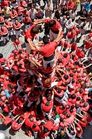 Colla Joves Xiquets de Valls  ´Castellers´ building human tower, a Catalan tradition  Valls  Tarragona province, Spain
