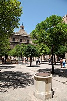 Interior courtyard of the Cathedral of Seville, Spain, Europe
