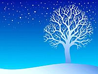 Winter tree with snow 3 _ color illustration.