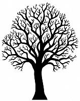 Silhouette of tree without leaf 2 _ black and white illustration.