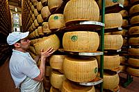 Italy, Emilia Romagna, Parma, Making of Parmesan cheese in Caseificio CPL
