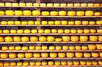 Gouda on Shelves