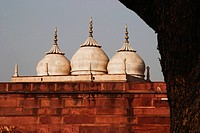 Low angle view of a fort, Agra Fort, Agra, Uttar Pradesh, India