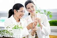 Two female scientists working in laboratory