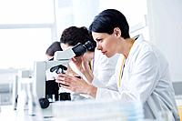 Lab workers using microscopes