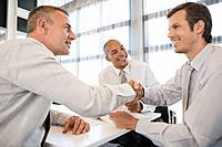 Three businessmen shaking hands