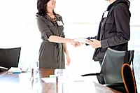 Business man and woman shaking hands in office