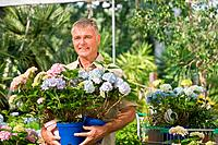 Senior man with pot plants at garden centre (thumbnail)
