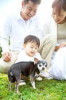 Baby boy petting Chihuahua