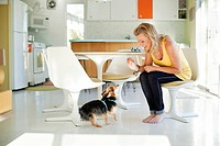 Caucasian woman giving dog treat in dining room