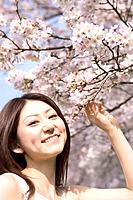 Portrait of a young woman with cherry blossoms in background, Kyoto Prefecture, Honshu, Japan