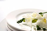 White flowers on a plate