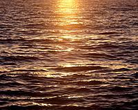 Sunset reflecting off sea surface