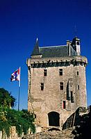 Gatehouse of historic chateau,house. Flag