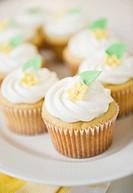 close up cupcakes
