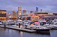 Night falls on the Melbourne Docklands