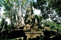 Temple complex. Preah Palilay. C12th Buddhist style. Overgrown by trees,roots.