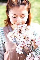 Young woman smelling cherry blossoms