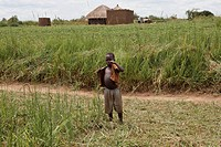 A Boy Standing On The Edge Of A Grass Field, Kampala Uganda Africa