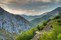 Tarna Mountain Pass. Redes Natural Park and Biosphere Reserve. Caso Council. Asturias. Spain