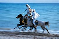 Gallopping horses at the beach, Djerba, Tunesia