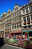 Baroque style houses at the Grand Place in the sunlight, Brussels, Belgium, Europe