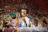 Golden Buddha in the Prayers hall at Drepung monastery near Lhas, Tibet Autonomous Region, People´s Republic of China
