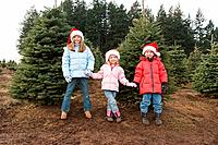 Kids holding hands by christmas trees
