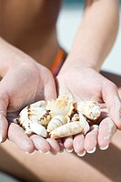 hands with shells
