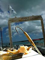 Bait and Hook on Table in Harbor, Turks and Caicos Islands, Caribbean