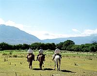 Cowboys on Horses Near Cafayete, Salta, Argentina