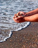 hands full of seashells