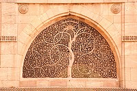 Carving of tree on the wall of sidi saiyad´s mosque , Ahmedabad , Gujarat , India