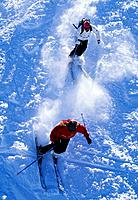 Two Alpine Skiers