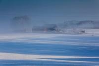 farmhouse in morning mist, Germany, Saxony, Vogtland