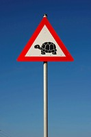 traffic sign warning against turtle pass, South Africa