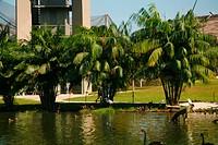 Lake, Belém, Pará, Brazil
