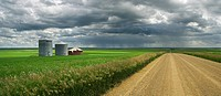 Country Road with fields and graineries and approaching rain storm near Oyen, Alberta, Canada
