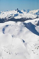 aerial of whistler mountain alpine with harmony and whistler bowls and black tusk in background, british columbia, Canada.