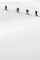 Guided ski group being led across snow slope, alpine bowl, British Columbia, Canada.