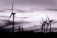 Warm tone black and white image of wind power turbines