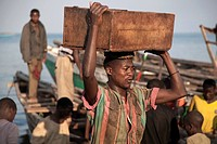 boy carrying wooden box with recently caught fish on his head from a boat to the shore from where it is brought to the capital, Burundi, Nyanza Lac, M...